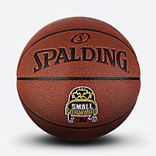 NBA位置球小前锋76-412Y